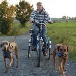 Micha mit Zughunden in der Hundeschule Dresden