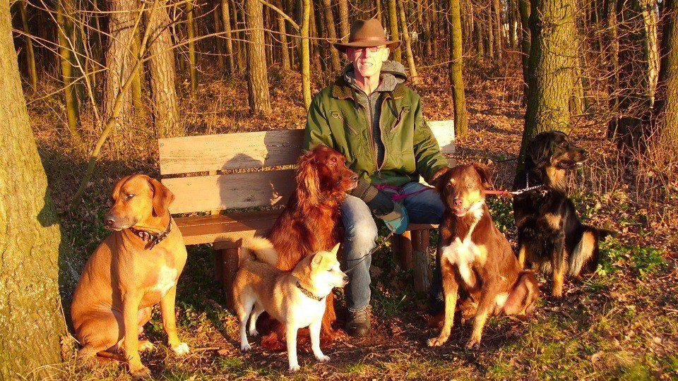 Hundeschule Achim Herbst