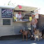 Am Eismobil in der Hundeschule Dresden und Tierpsychologie Sachsen