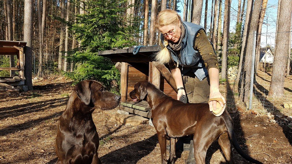 Iris bei der Tierpflege in der Hundeschule Dresden