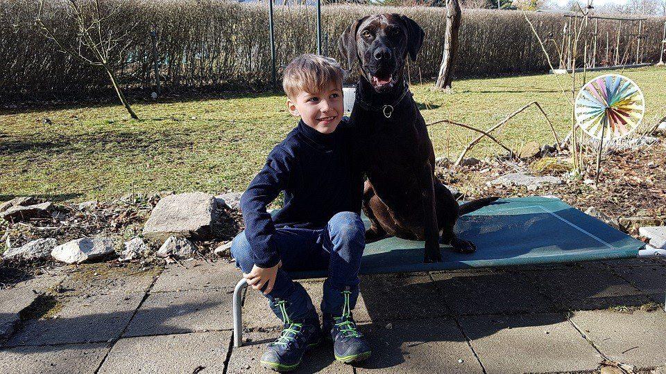 Ein Hundefreund in der Hundeschule Dresden und Tierpsychologie Sachsen