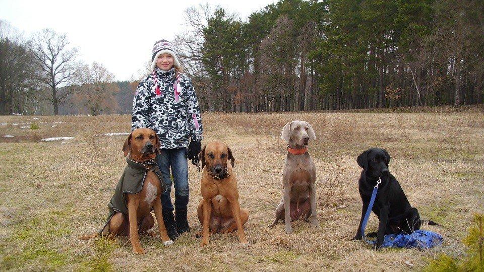 Mit 5 Schülern in der Hundeschule Dresden und Tierpsychologie Sachsen