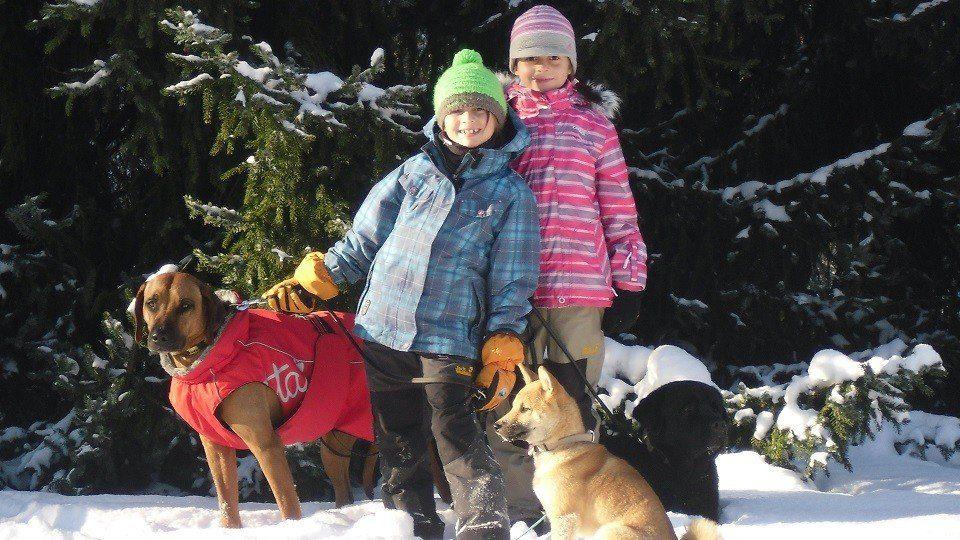 Lina und Laureen mit Endo in der Hundeschule Dresden und Tierpsychologie Sachsen