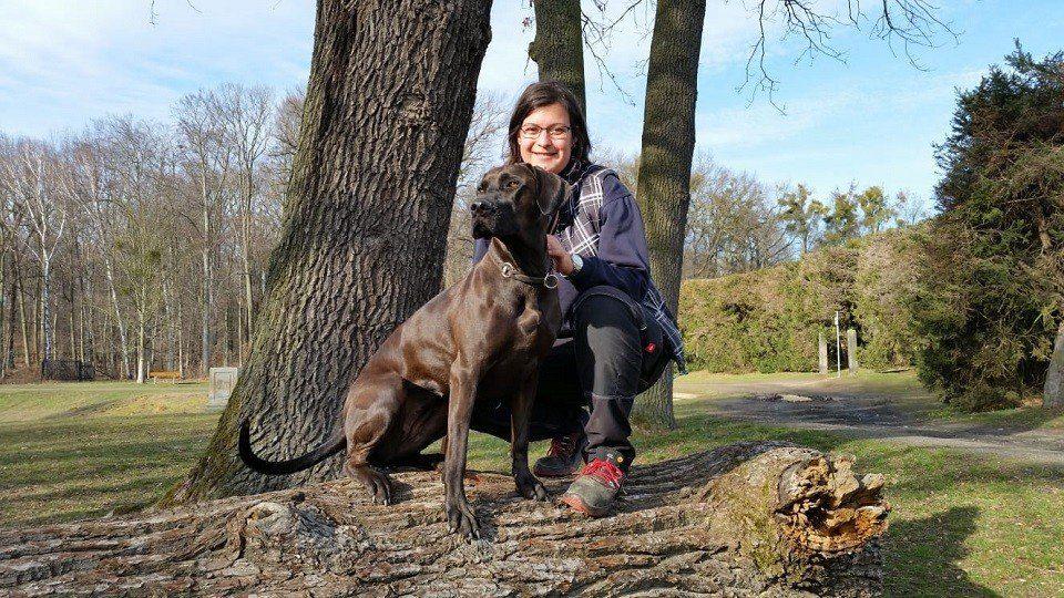 Sophie und Inti in der Hundeschule Dresden und Tierpsychologie Sachsen