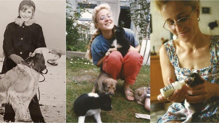 Iris mit vielen Hunden