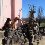 Tierpsychologie Moritzburg mit Hirsch und Hunden