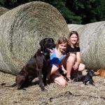 Hundeschule und Tierpsychologie in Dresden und Sachsen