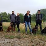 in der Hundeschule Dresden und Tierpsychologie Sachsen