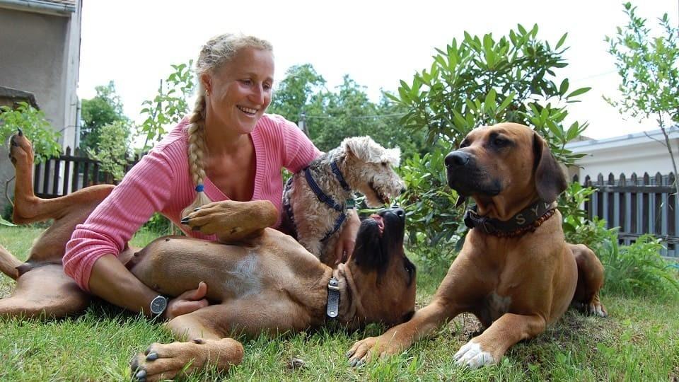 Hundeschule und Tierpsychologie Dresden Iris Bahrke-Schabacker