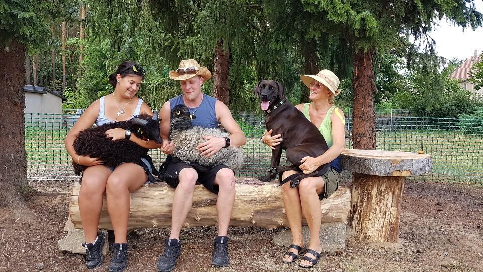 Tierpflege in der Hundeschule Dresden