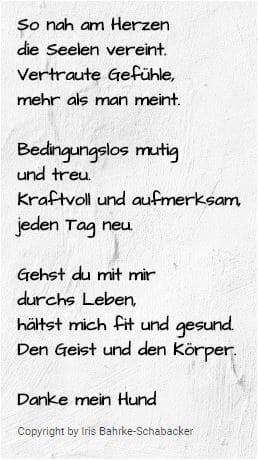 Hundeschule und Tierpsychologie Dresden Iris Bahrke-Schabacker Danke mein Hund