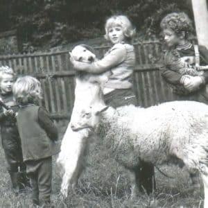 Hundeschule und Tierpsychologie Dresden Iris Bahrke-Schabacker Geschwister