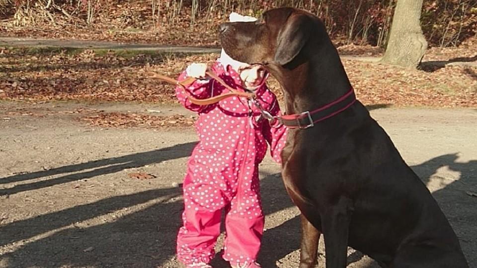 Kind und Hund Hundeschule Dresden Iris Bahrke5
